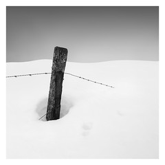 Winter - Disappeared (Marco Maljaars) Tags: marcomaljaars pole minimalism minimal mood empty barb wire snow winter cold monochrome blackandwhite bw fineart landscape ice old paint blister
