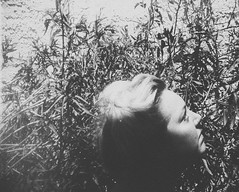 Day 096 (H o l l y.) Tags: lomography 110mm film analog kodak instamatic bw black white no color self portrait blonde fashion weeds plants retro indie vintage alone looking away
