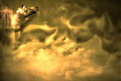extasis del fin del dia (Mau Silerio) Tags: underwater meikon sony alpha tradition traditional surreal surrealism surrealisme dreaming dreamscape dream photography balloons