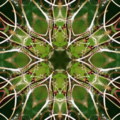 Kaleido Abstract 2016 (Lostash) Tags: art photography edited symmetry shapes patterns textures reflection kaleidoscope