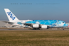 ANA_A380_JA381A_20190214_XFW-1 (Dirk Grothe | Aviation Photography) Tags: ana all nippon airways a380 ja381a xfw turtle