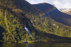 Throwbacks (Matt Champlin) Tags: newzealand travel exotic amazing nature landscape boat boating fjords sound sounds fjordland hike hiking adventure climb lush green winter rainbow canon 2018 peaceful island mountains trees incredible