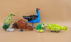 New Zealand Birds (-Balbo-) Tags: lego moc bird new zealand kiwi kea baby pukeko kakapo creation bauwerk wildlife southland