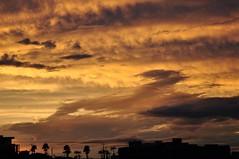 Ontem, voltando prá casa... (Ruby Ferreira ®) Tags: silhuetas silhouettes pordosol sunset sky céu ontheroad naestrada clouds nuvens summer verão