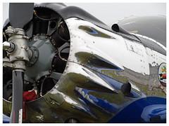 Ryan SCW-145  VH-SCW (Aerofossile2012) Tags: avion aircraft aviation meeting airshow laferté 2017 ryan scw145 vhscw