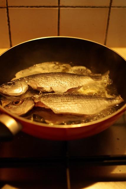 pesci in bianco (2)