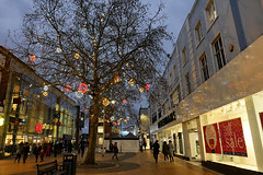 Day #4020 (cazphoto.co.uk) Tags: 2019treasurehunt cityscape duksandlowlight 2019th67 chelmsford dusk january lights sales shopping shops towncentre tree project365 beyond4018 020119 panasonic lumix dmcgx8 panasonic1235mmf28lumixgxvarioasphpowerois