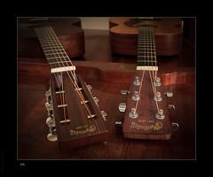 When Martin meets Martin... (hans luke) Tags: martin guitar music