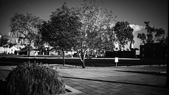 mesa 02347 (m.r. nelson) Tags: mesa arizona az america burnside35 lensbaby southwest usa mrnelson marknelson markinaz streetphotography urban newtopographic urbanlandscape artphotography thewest wildwest documentaryphotography people color colorpotography farbstoffe farbe