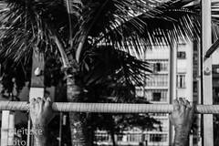 14 Santos Summer (fneitzke) Tags: portfolio santos sãopaulo baixadasantista brasil brazil brésil bresilien brasile brasilien latinamerica latinoamérica américalatina amériquelatine southamerica sudamérica américadelsur américadosul amériquedusud canont5eos1200d canont5 canon summer verão été verano 2018 dezembro december decembre entardecer praia plage playa beach spiaggia strand sport sportsphotography esporte desporto fitness ginástica gymnastics gymnastique exercício exercice exercise peo francophone blackandwhite blackwhite pretoebranco noiretblanc monocromático monochromatic monochromephotography monochromaticphotography monochrome blancoynegro hand hands mano manos main mains mão mãos canal3