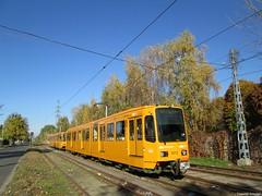 A 37-es villamos a Kozma utcában (Torontáli Krisztián) Tags: villamos vehicle budapest kőbánya railroad tram transport tramway strassenbahn streetcar tw6100 publictransport outdoor