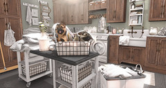 Fuzzy Helpers (Sienna Skye Foxdale) Tags: dustbunny fameshed uber varonis loftaria jian nutmeg hive secondspaces acorn homeandgarden homedesign interiordesign indoors interior laundry dog animals light decosoupblog decor design