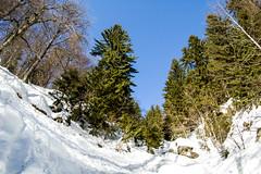 0077_DSC_2527 (marcellszmandray) Tags: kirándulás tél lucskaifátra szlovákia hó fátra ferrata viaferrata hzs