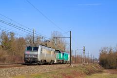 Gevrey-Sibelin (AziroxY) Tags: trains trainspotting train bb26000 bb60000 bb26062 photo photographie plm photosncf sncf fretsncf bb75000