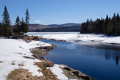 Water To Ice (Northern Wolf Photography) Tags: 17mm cold connecticut em5 forest frozen ice lake mountains olympus second sky snow trees winter woods pittsburg newhampshire unitedstatesofamerica us