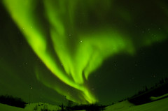 March Madness-119 (juan_guthrie) Tags: northernlights yellowknife nwt aurora
