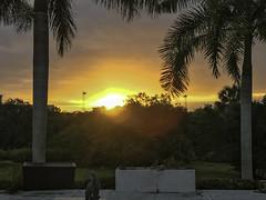 This Morning's Sunrise (soniaadammurray - On & Off) Tags: iphone sunrise sarasota florida usa sky clouds trees fountain stadiumlights grass planters shadows reflections artchallenge exterior