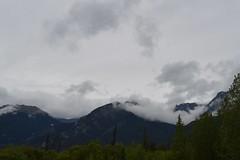 DSC_3801_jpeg (Ceceliamch) Tags: jaspernationalpark yohonationalpark emeraldlake athabascaglacier icefieldsparkway athabascafalls miettehotsprings bowlake mountains banff jasper yoho bc alberta