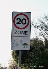 Challenge Friday 2019, week 8, theme speed (2) - Go Slow tortoise sign near school (karenblakeman) Tags: southviewavenue caversham uk challengefriday cf19 speed roadsign 2019 february reading berkshire