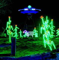 ufo in the cornfields (JoelDeluxe) Tags: rol riveroflights abq biopark nm december 2018 albuquerque biological park pnm light display colors lights sculptures fantasy newmexico hdr joeldeluxe