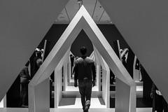 MC Escher Exhibition (David Redfearn) Tags: escher escherexhibition nationalgalleryofvictoria melbourne artexhibition blackandwhitephotography monochrome canon6d canoneos6d canonef50mm