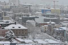 Seattle Snowmageddon 2019 19 (C.M. Keiner) Tags: seattle washington usa city cityscape skyline mountains pacific northwest puget sound snow blizzard winter storm urban