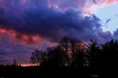 Nel blu dipinto di .... (kiareimages1) Tags: sunsets winter trees sky landscapes clouds colors belgium charleroi nature