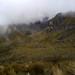 Páramo del Pichincha