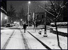 Tracks on Corcoran Street (Rex Block) Tags: corcoranstreet nikon d750 dslr 50mm f18g dc washington snurlough snow night street 16thstreet pedestrian monochrome bw