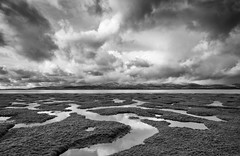 Duddon Estuary, to Black Combe, stormy winter day 1 (Kirkbysnapper) Tags: duddonestuary soutergate kirkbyinfurness cumbria voigtlander21mm landscape winter snow stormy skies blackandwhite monochrome saltmarsh