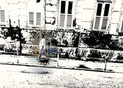 amizade sincera (lucia yunes) Tags: rua cenaderua fotoderua fotografiaderua bicho amizade cachorro omelhoramigodohomem streetphoto streetshot streetphotography streetscene streetlife lifestreet motozplay luciayunes mobilephotography mobilephoto