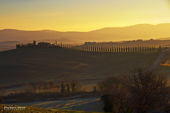 The farmhouse in morning light (Agrippino Salerno) Tags: farmhouse agrippinosalerno canon manfrotto cypress trees travel hills goldenhour rays valdorcia tuscany