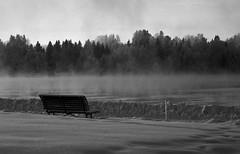 foggy winter 4 (EllaH52) Tags: winter snow fog foggy water river tree trees bench mist monochrome blackwhite greyscale