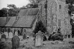 Church and graveyard (vintage ladies) Tags: vintage blackandwhite photograph photo church graveyard
