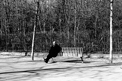 At the edge of the bench (pascalcolin1) Tags: paris13 homme man banc bench parc trees arbres photoderue streetview urbanarte noiretblanc blackandwhite photopascalcolin 50mm canon50mm canon