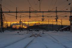 What track to go ? (ralfkai41) Tags: gleise schnee lulea bahnhof sunrise winter sonne sweden trainstation sonnenaufgang railway railwaystation sun schweden snow