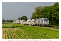 BB 75037 ETF - Kogenheim (CC72080) Tags: prima akiem etf bb75000 locomotive lokomotive train infra dégarnisseuse kogenheim