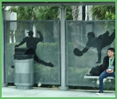 Baseball bench (LarryJay99 ) Tags: drab jeans backpacks urban urbanbackpackers busstop seated sittingpretty benches happybenchmonday guys citypeople westpalmbeach florida people man men guy dude male studly manly dudes handsome virile waiting city urbanites