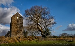 Past times (awardphotography73) Tags: sky tree cymru welsh photography nikon cardiff wales church past history decay ruins stmary'schurch