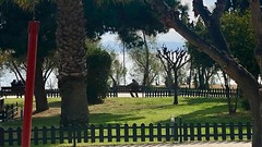 Afternoon in the Park (RobW_) Tags: flisvos park palaio faliro athens greece thursday 14mar2019 march 2019