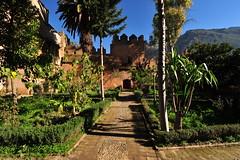 Chefchaouen, Morocco, January 2019 D700 314 (tango-) Tags: chefchaouen bluecity villaggioblu bluevillage morocco maroc 摩洛哥 marruecos марокко المغرب