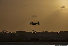 F-5EM (Força Aérea Brasileira - Página Oficial) Tags: bra brasil brazil brazilianairforce cruzex cruzex2018 fab forcaaereabrasileira fotojohnsonbarros natalrn natal rn f5em aviacaodecaca caça silhueta pordosol aviãodecaça