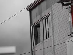 Dia a Dia (détail) Tags: natureza urbano détail