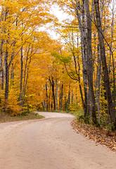 UP-Michigan-Pathwa (Bipinrkrishna) Tags: fallcolors fall2018 photography canon autumnfoliage munising michigan puremichigan upperpeninsula