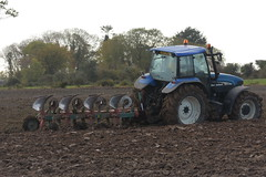 New Holland TM155 Tractor with a Kverne;and 4 Furrow Plough (Shane Casey CK25) Tags: new holland tm155 tractor kverneand 4 furrow plough cnh nh blue rathcormac newholland traktor traktori tracteur trekker trator ciągnik ploughing turn sod turnsod turningsod turning sow sowing set setting tillage till tilling plant planting crop crops cereal cereals county cork ireland irish farm farmer farming agri agriculture contractor field ground soil dirt earth dust work working horse power horsepower hp pull pulling machine machinery nikon d7200