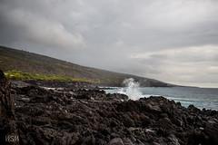 Hawaii 2018-11 (skot917) Tags: 2018 afs1635mmf4 anjisbeachhouse captaincook d810 nikon pebblesbeach bigisland hawaii