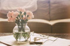 Quiet Afternoon (flashfix) Tags: february032019 2019inphotos flashfix flashfixphotography ottawa ontario canada nikond7100 40mm stilllife flowers carnations ipod music couch lazy quiet quietafternoon soft light bokeh vase ipodclassic water stems earphones headphones
