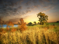 The field 20 (mrbillt6) Tags: landscape rural prairie grass field tree waters fall autumn sky outdoors country countryside photoart northdakota