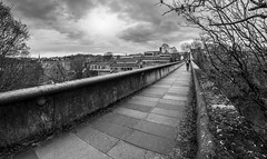Kingsgate Bridge. (CWhatPhotos) Tags: cwhatphotos camera photographs photograph pics pictures pic picture image images foto fotos photography artistic that have which contain flickr olympus omd em10 mk ll ii mzuiko 8mm prime fisheye fish eye lens durham north east england uk river wear city centre water concrete structure kingsgate bridge footbridge foot path footpath walkway iconic student crossing bw black white mono monochrome steps down