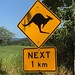 Kangaroo crossing sign, Queensland, Australia. They were right!